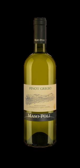 Pinot Grigio Trentino DOC
