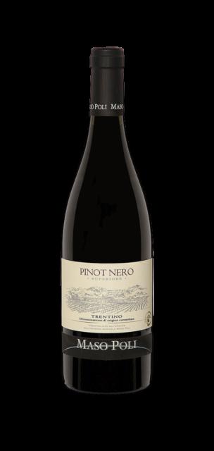 Pinot Noir Superiore Trentino DOC
