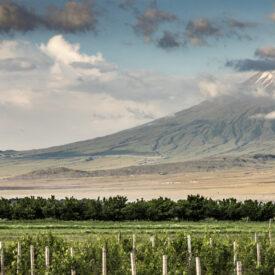 right Armenia