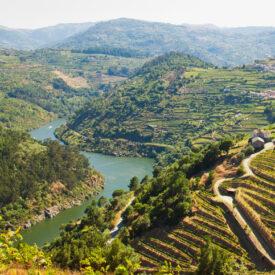 right Portugal