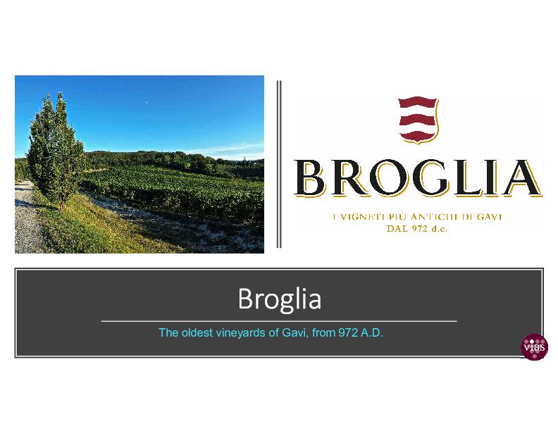 Broglia+Presentation